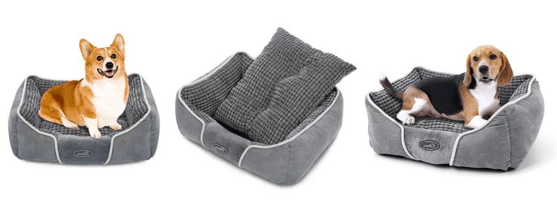 Camas para mascotas medianas, las mejores 3 camas para perros medianos