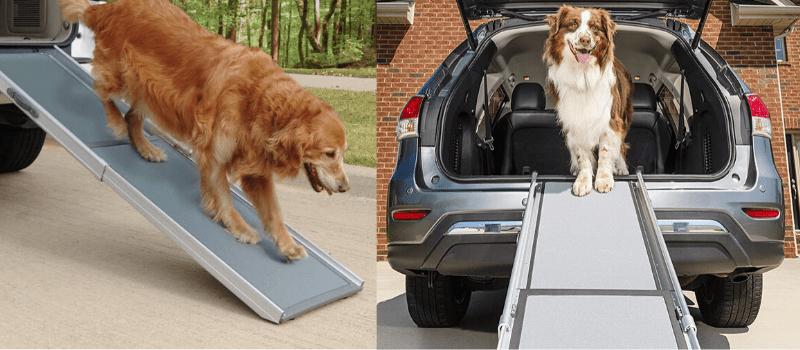 rampas para perros segunda mano, rampas para perros coche, rampa para perros tiendanimal, rampas, para perros baratas