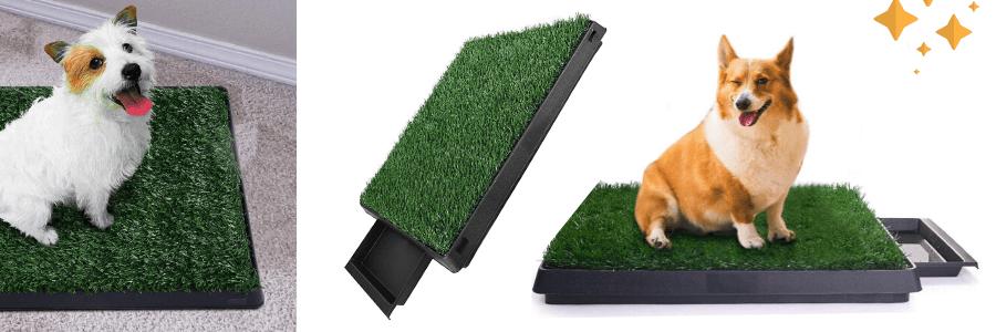 aseo mascotas, el mejor inodoro interior para perros, inodoro para perros grandes, wc para perros casa, el mejor wc para perros pequeños