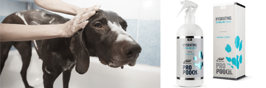 champú al seco para perros, champú perros mercadona, champú seco perros, champú en seco para perros tiendanimal